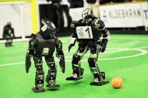 BvOF RoboCup2013